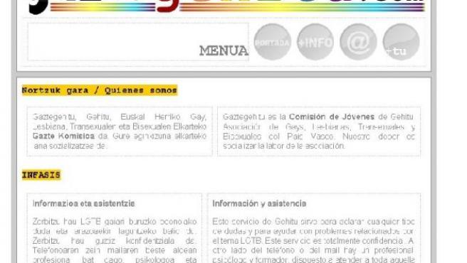 Web del colectivo Gaztegehitu. 20MINUTOS