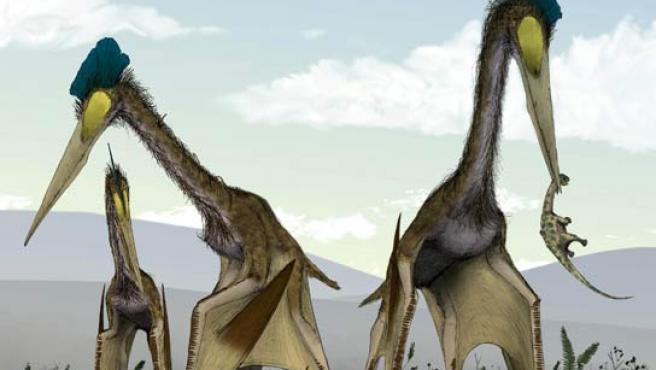Dinosaurios Gigantes Voladores Preferian Tener Los Pies En La Tierra See more of dinosaurios gigantes on facebook. dinosaurios gigantes voladores