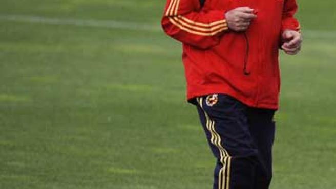 Luis Aragonés, seleccionador español, en un entrenamiento.