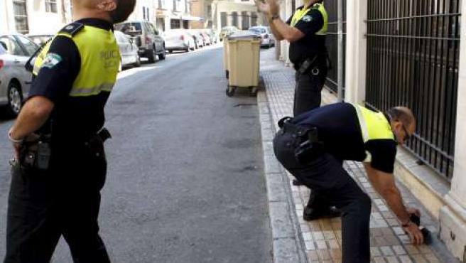 Momento en que los agentes de la Policía Local recuperan el nido.
