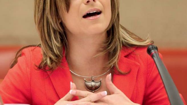 La ministra de Igualdad, Bibiana Aído, durante su comparecencia, por primera vez en el Congreso (EFE/Bernardo Rodríguez)