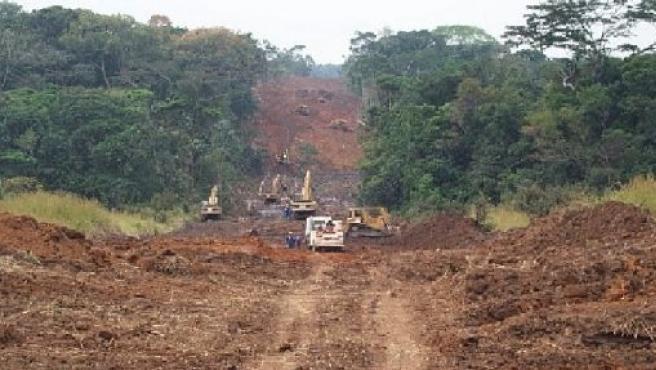 La deforestación se ha presentado como uno de los problemas más graves del continente africano. (ARCHIVO)