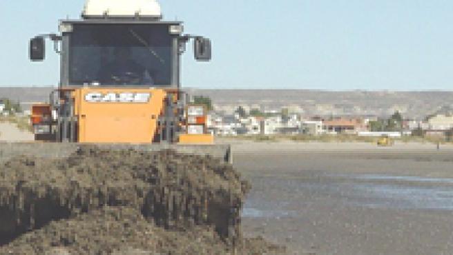 Varios operarios limpiando una playa. ARCHIVO/20 MINUTOS