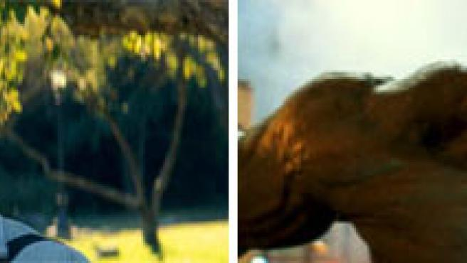 Imágenes de 'El increíble Hulk'.