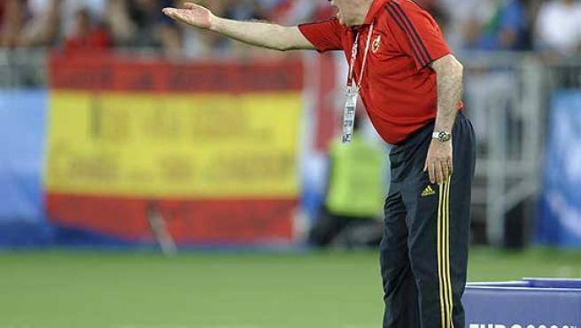 El seleccionador, Luis Aragonés, da instrucciones desde la banda.