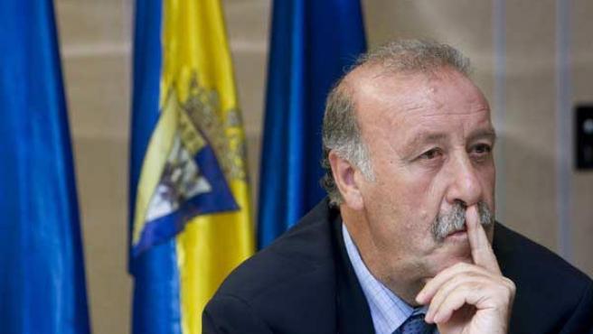 El ex entrenador del Real Madrid y ex director deportivo del Cádiz CF, Vicente del Bosque. (Efe)
