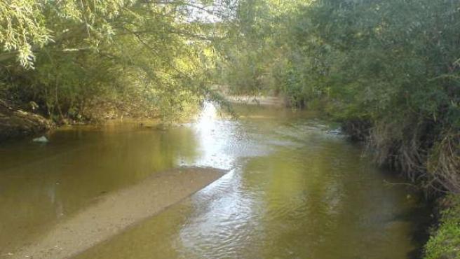 Imagen del río Adaja a su paso por Villalba de Adaja. (WIKIPEDIA )