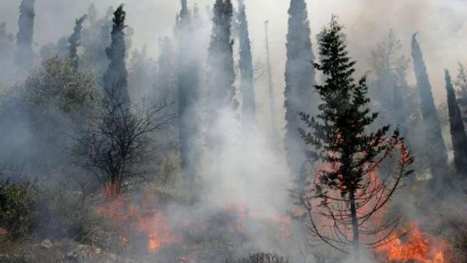 Un incendio forestal calcina un monte gallego. (ARCHIVO)
