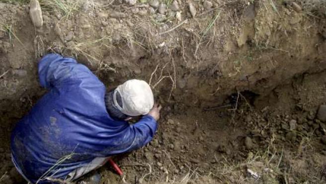 Un hombre trabaja en la fosa común denominada de Los Estudiantes, en las proximidades de Izagre. (EFE)