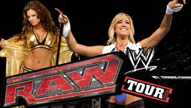 Concurso: 'El mejor fan de WWE'