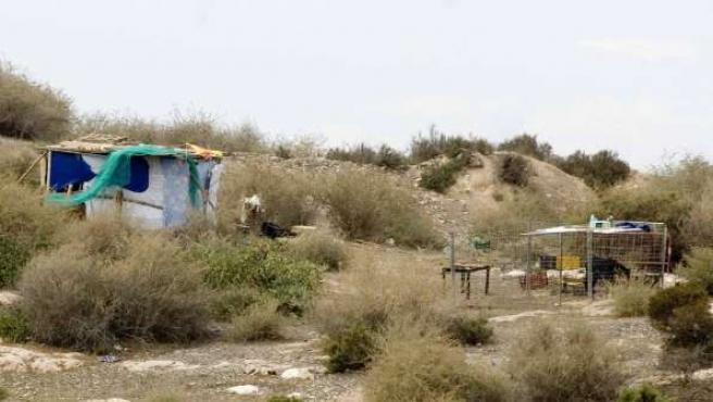 Imagen de la chabola y el corral instalados en los terrenos.