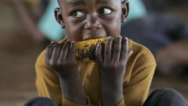 Cada seis segundos muere un niño por problemas ligados al hambre y la malnutrición.