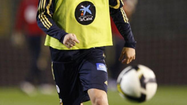 Fernando Torres en un entrenamiento de la selección. (EFE)