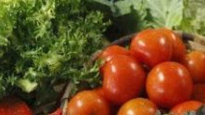 Tomates y otras verduras. (ARCHIVO)