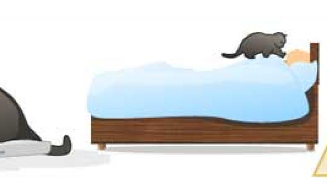 Aunque creas que es tu amigo, cuidado (www.catswhothrowupgrass.com)