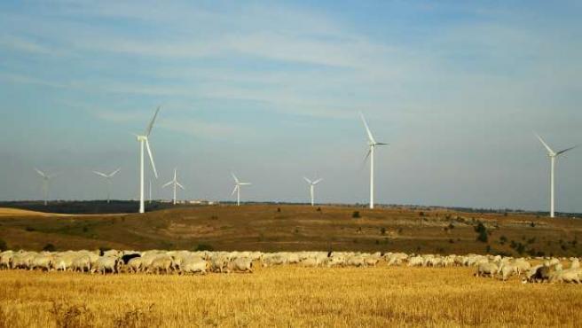 Parque eólico de Eolia Renovables en Negredo, Burgos.