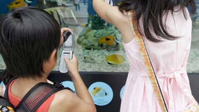 Dos niños utilizando su teléfono móvil.