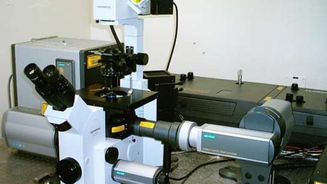 Microscopio multifotón.