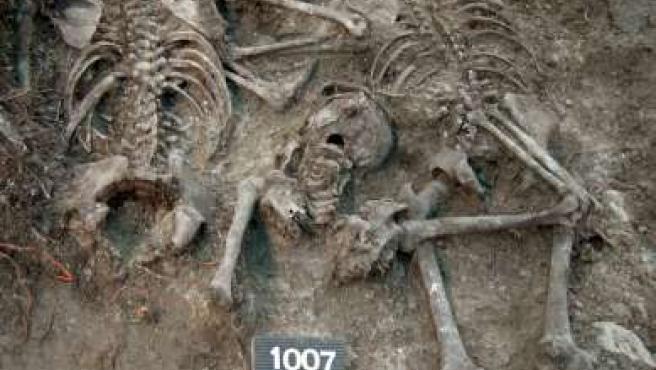 Fotografía facilitada por Paleolab de restos óseos encontrados en una fosa común de Alcalá de la Selva. (EFE)