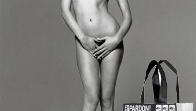 El popular desnudo de Carla Bruni y su adaptación en la bolsa de 'Pardon'.