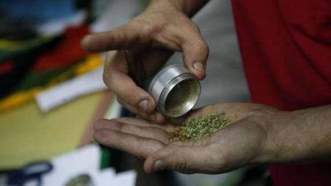 Un joven enseña una muestra de marihuana. (ARCHIVO)