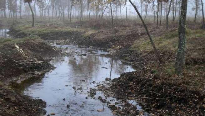 AL La CHD invierte cerca de 158.000 euros en la mejora del cauce del río Castrón a su paso por Ferreras de Abajo. (ICAL)