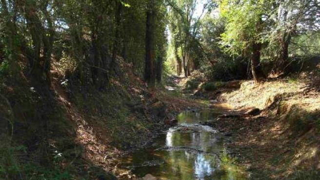 Río Izana a su paso por Matamala de Almazán. (ICAL)