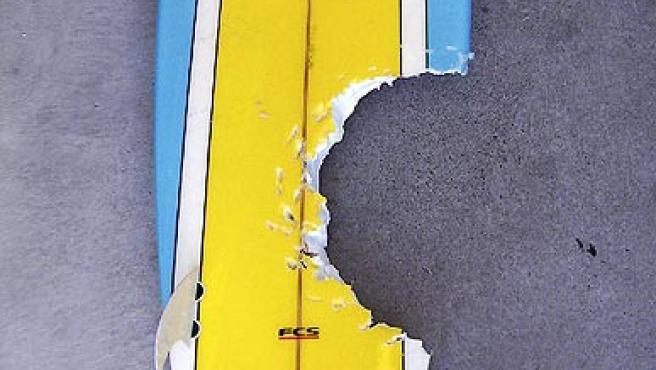 Una tabla de surf mordida por un tiburón en una playa de Tasmania.