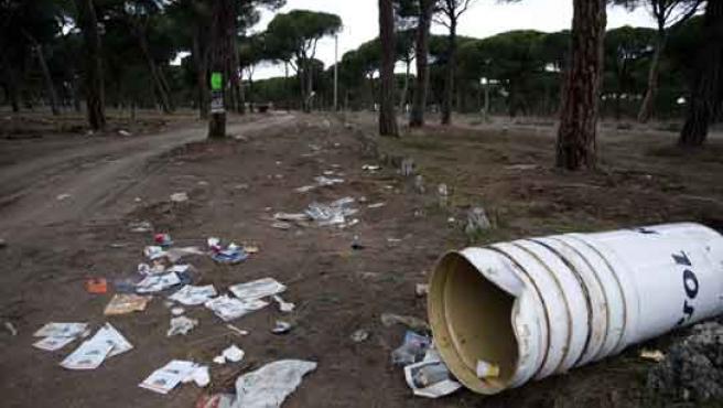Restos de basura en el pinar de Antequera, una semana después de Pingüinos 2009.