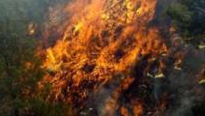 El fuego arrasó en la Dehesa del Generalife más de 51 hectáreas en 2007.