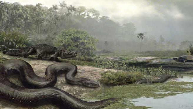 Dibujo que recrea cómo era la Titanoboa cerrejonensis, la serpiente más grande del mundo. (EFE).