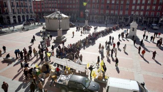 Cientos de vallisoletanos hacen cola para recoger leche y pan gratis.