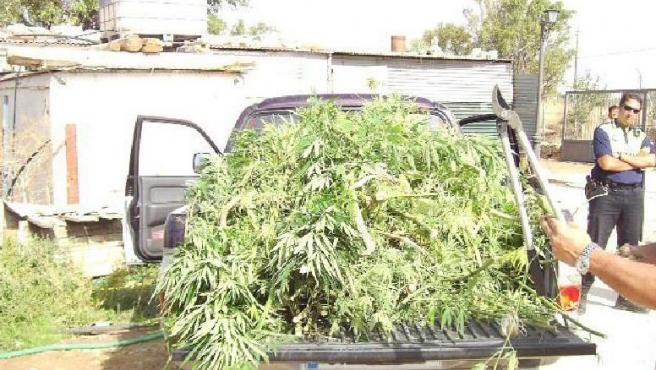 Marihuana incautada por la Policía en una redada en Andalucía (ARCHIVO)