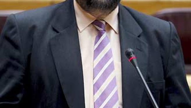 Francisco Caamaño, en su primera intervención en el Senado. (Gustavo Cuevas / EFE).