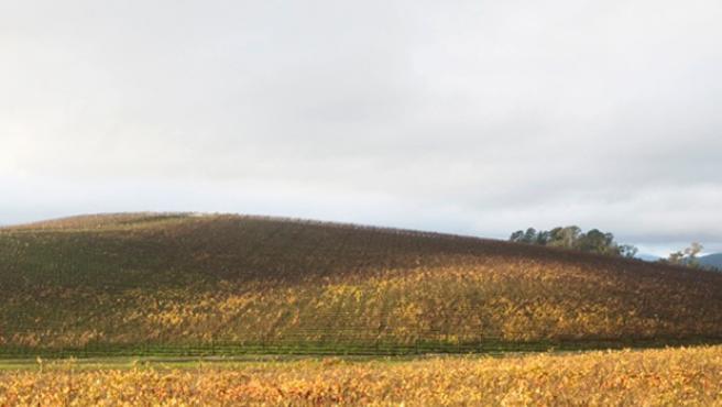Vista, en 2006, del valle que ilustra el fondo de pantalla que venía por defecto en Windows XP.