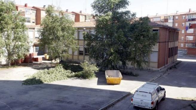 Tala de árboles en el colegio José Zorrilla de Valladolid.
