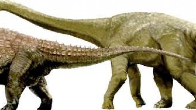 Las tres nuevas especies fueron descubiertas en un yacimiento prehistórico en el oeste de Queensland.