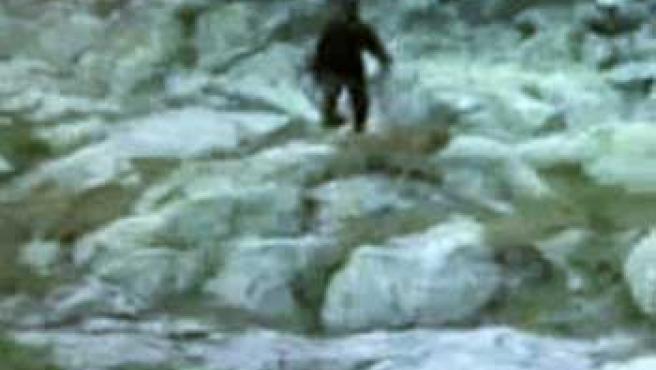 """Imagen del vídeo capturado, que mostraría a una criatura """"enorme y peluda"""" que algunos definen como el 'Yeti Polaco'."""