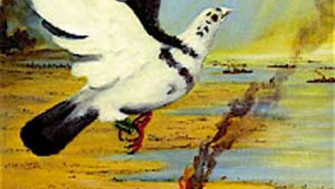 Portada del libro 'Paddy the Pigeon', de Gail Seekamp y Seán Aherneen.