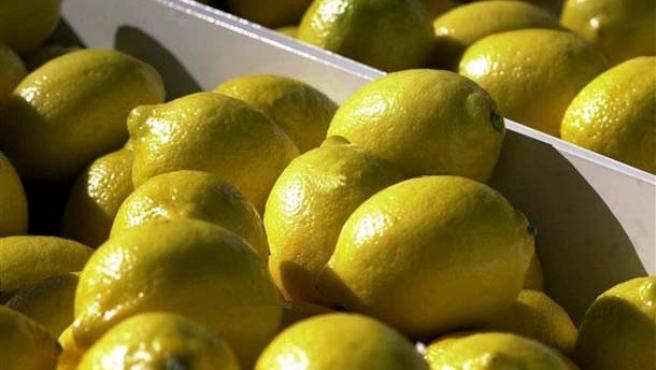 Limones en una frutería.