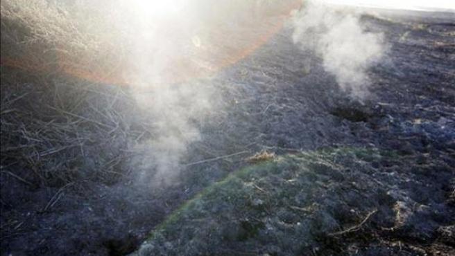 Fumarolas procedentes de los incendios subterráneos de turbas que, debido a la falta de agua, están consumiendo las Tablas de Daimiel.