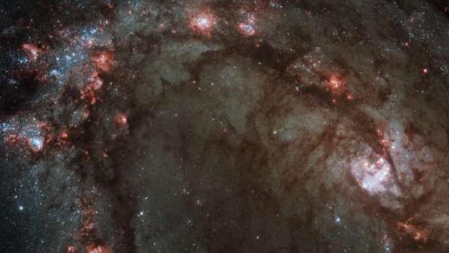 El centro de la galaxia espiral M83.