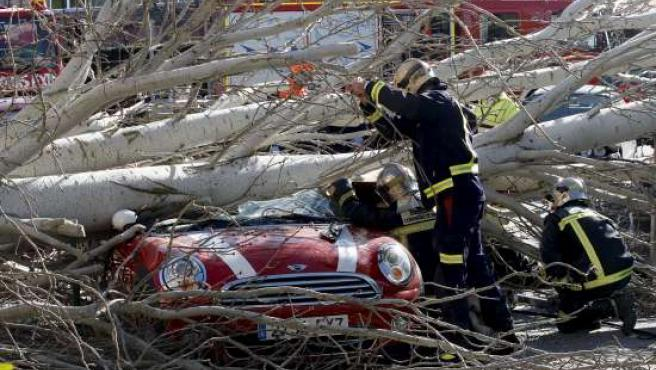 Los Bomberos intentan rescatar a una mujer que ha quedado atrapada en un coche después de que le cayera un árbol encima.