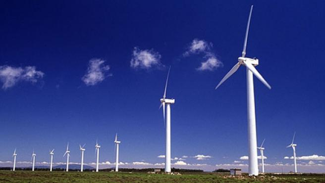 Las energías renovables es un sector que demanda profesionales.