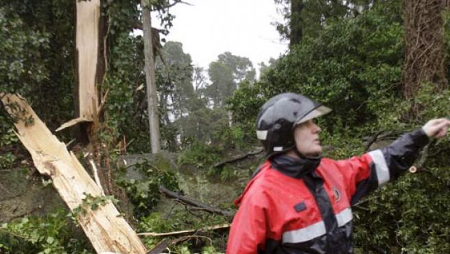 Un bombero junto a un árbol caído, una de las consecuencias del temporal que asola la región gallega y que afecta a sus cuatro provincias.