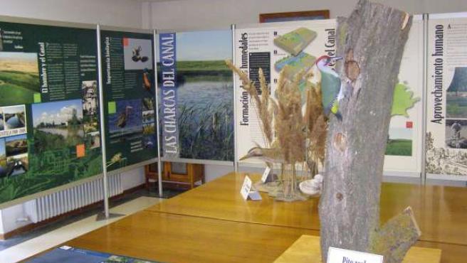 La Exposición 'Life Naturaleza: Lagunas Del Canal De Castilla'