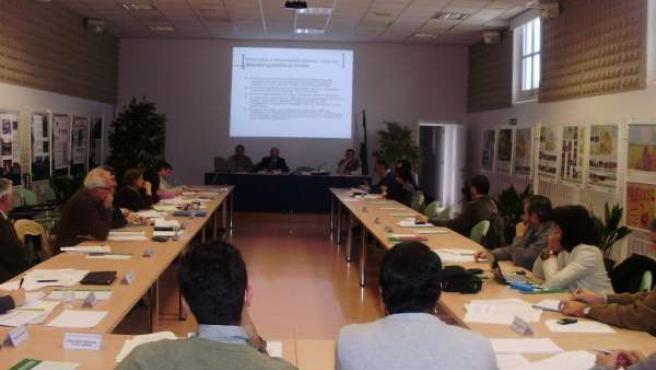 Reunión Del Grupo De Trabajo Para La Estrategia Andaluza Para El Paisaje