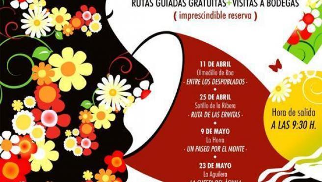 Cartel De Las Rutas De Senderismo 'Flores Y Vino'