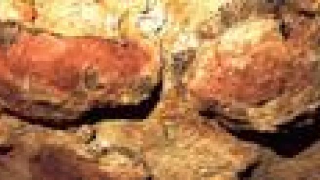 El Patronato de Altamira apoya la apertura limitada de la cueva, sobre la que decidirá un grupo de trabajo