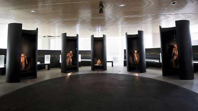 Imagen del Museo de la Evolución Humana en Burgos (© 2010 Photo S.Entressangle - E.Daynes - Reconstruction Atelier Daynes Paris).